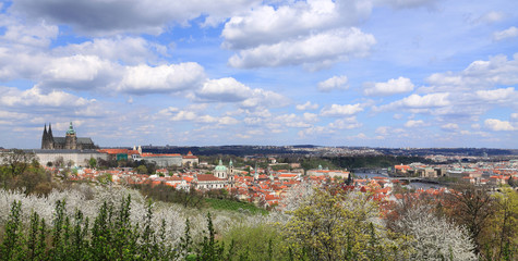 View on the spring Prague with gothic Castle, Czech Republic
