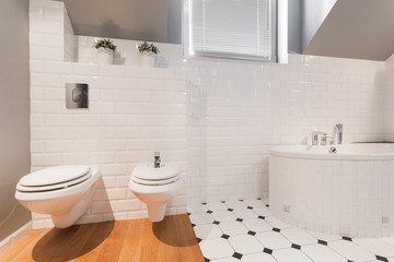 Elegant toilet interior