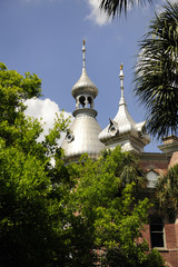 Minarets above the Tree Tops