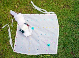 ready to play Kite on grass