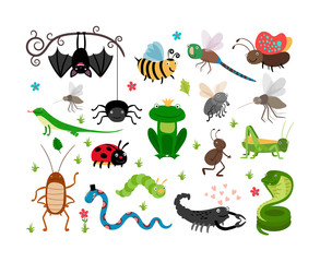 Cute vector insects, reptiles. Bee, grasshopper, lizard and