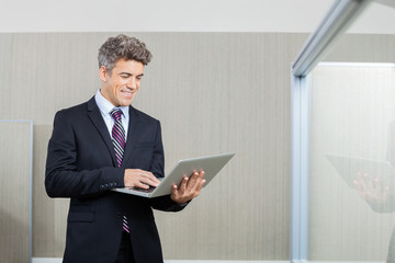 Happy Business Executive Working On Laptop