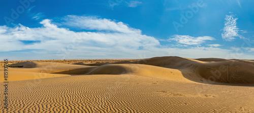 Aluminium Woestijn Panorama of dunes in Thar Desert, Rajasthan, India