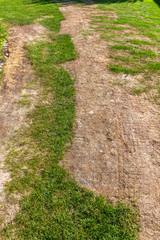 kaputter Rasen