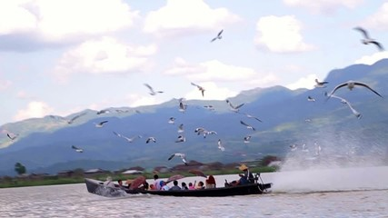 Beautiful landscape, birds and people travel by boat