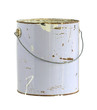 canvas print picture - Paint can (with clipping path) isolated on white background