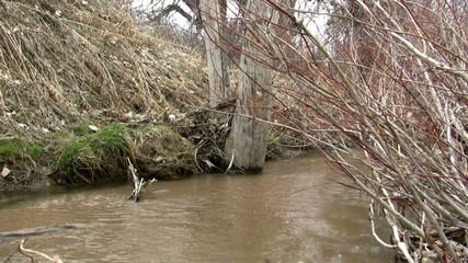 (Perfect Loop) Overflowing Muddy Barren Creek