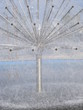 Leinwanddruck Bild - Dandelion shaped fountain in water basin