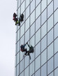 sanitation workers cleaning glass facade hotel - 81603934