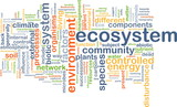 ecosystem wordcloud concept illustration poster