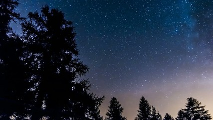 timelapse stars and milky way in mountain woods. Italy