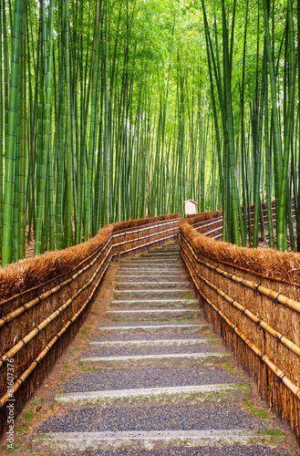 In de dag Bamboe Path to bamboo forest, Arashiyama, Kyoto, Japan