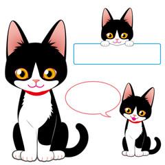 猫 白黒柄