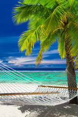 Empty hammock between palm trees on tropical beach of Rarotonga