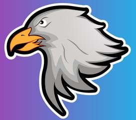 Eagle Head Vector Illustration