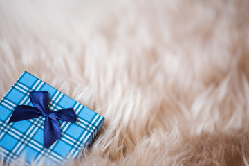 blue  box  on fur background