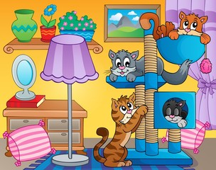Room with happy cats