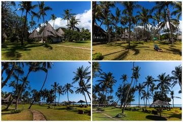 Palms on the beach in Mombasa, beach, mombasa