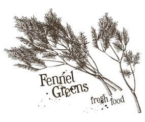 dill, fennel vector logo design template. fresh vegetables, food