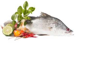 Snapper and spices isolate on white