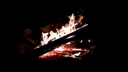 (Seamless Loop) Campfire Log Night Shot