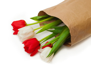 tulips in paper packing on white background