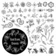 Vector set of decorative floral elements