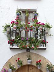 Balcón repleto de macetas con flores