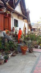 Lao monk