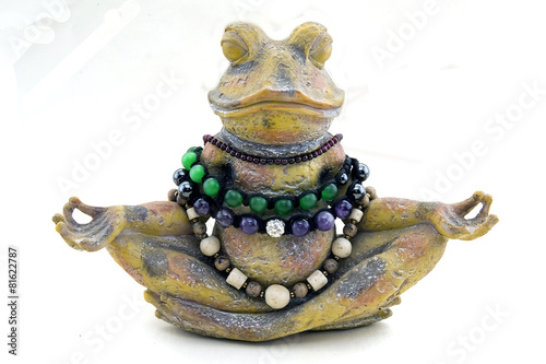 Foto op Canvas Kikker stone frog meditates on a white background