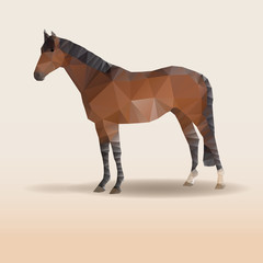 Low poly design. Horse illustration.
