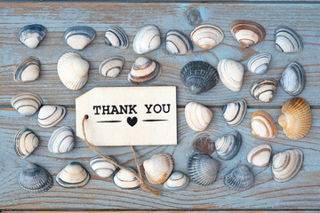 wooden background with thank you label and sea beach shells