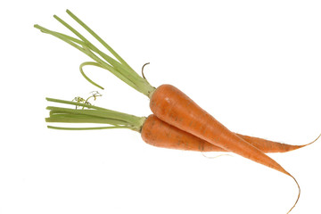 two carrots isolated on white background
