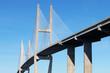 Suspension bridge at Brunswick, GA - 81631166