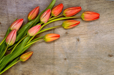 bouquet of red tulips on the wooden background