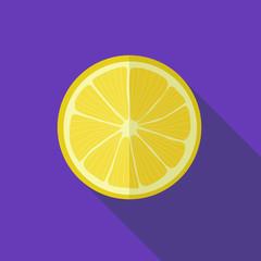 Lemon icon. Flat design vector illustration.