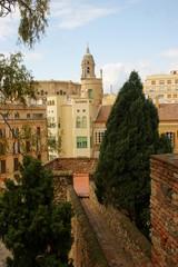 Dall'Alcazaba