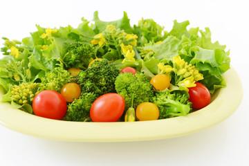 新鮮なサラダ