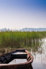 Old boat on the lake in the reeds
