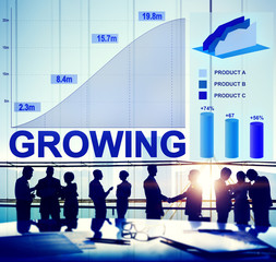 Growing Growth Success Business Aim Target Concept