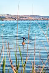 Taranto boa galleggiante