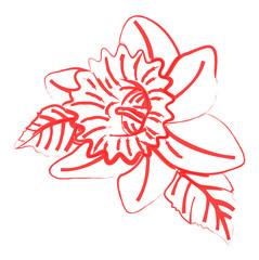 Retro Wild Flower Vector Drawing
