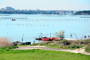 Taranto Ponte Punta Penna Pizzone