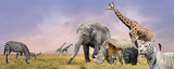 Savanna wild animals collage