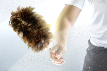 A hand using a feather duster