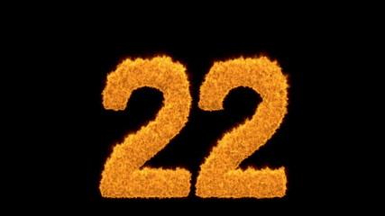 Ornamental fiery orange number 22