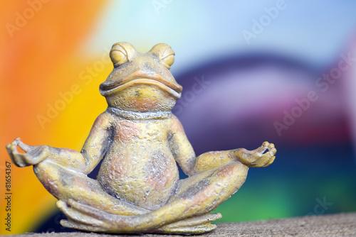 Foto op Plexiglas Kikker stone frog who meditates