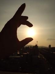 太陽  摘まんだ