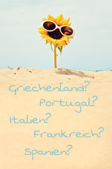 countrys of south europe - sunflower at beach