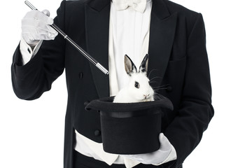 Appearance of rabbit inside magician top hat